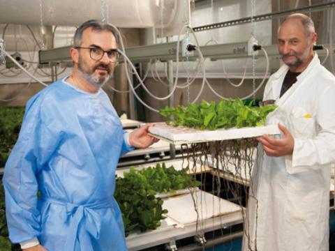 EDO Radici Felici - l'agricoltura del futuro parte da Quarrata